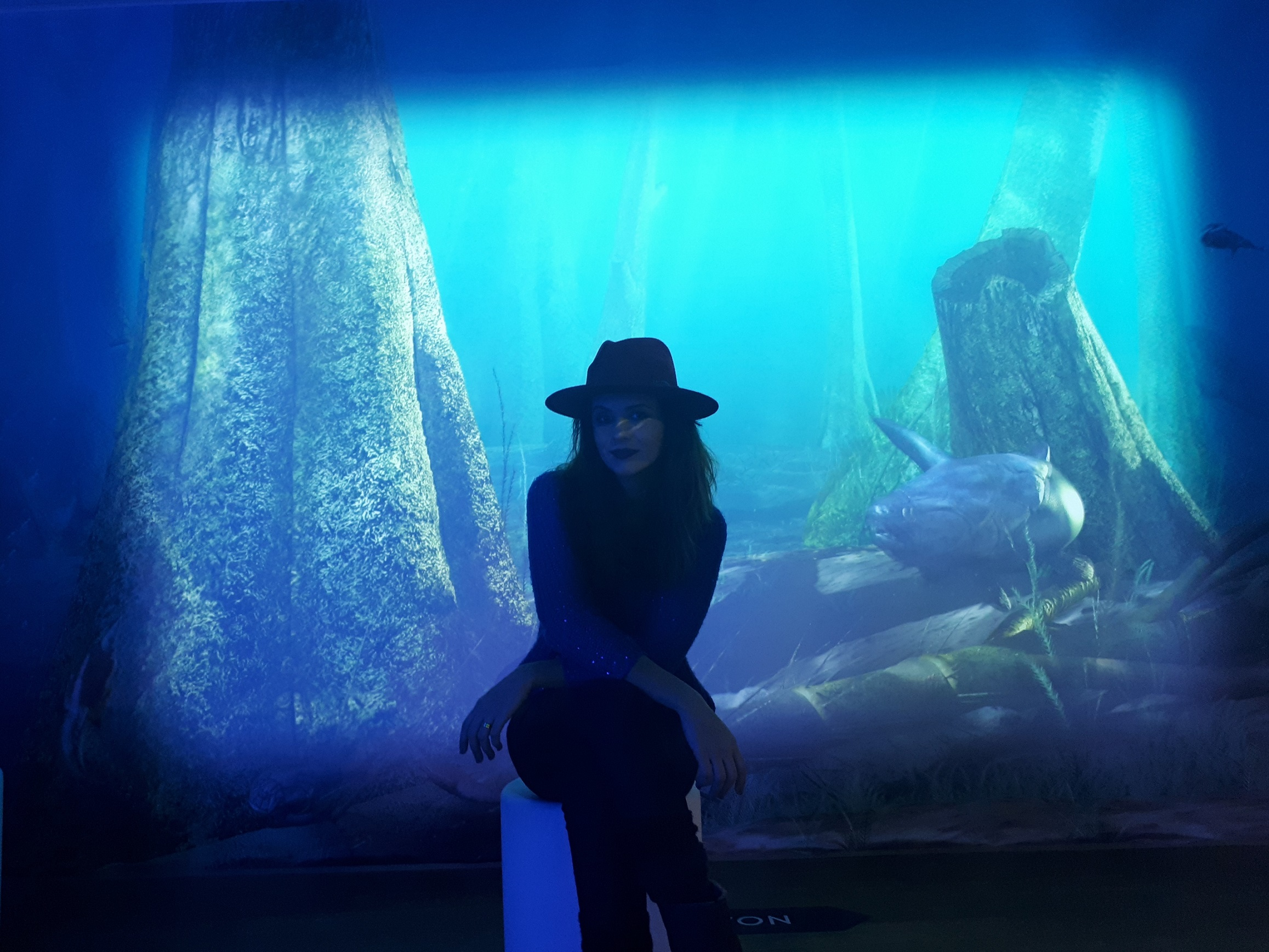 Sáskia Doehler: Secrets of the Ancient Sea revealed at the Estonian Museum of Natural History